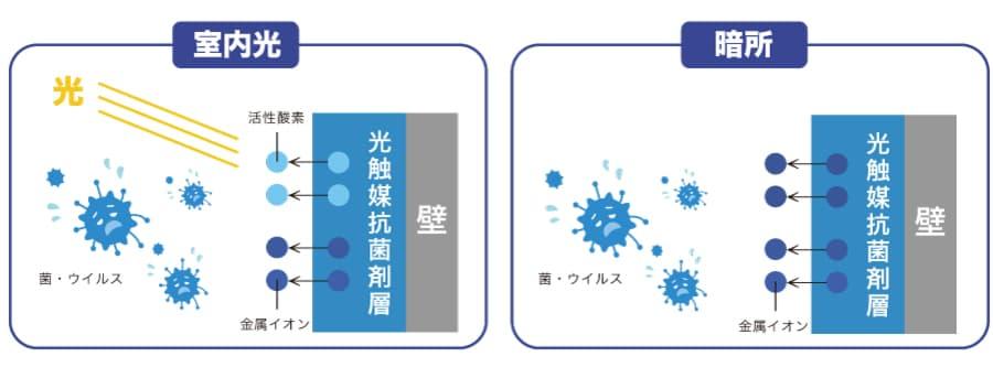 抗ウイルス・抗菌のメカニズム